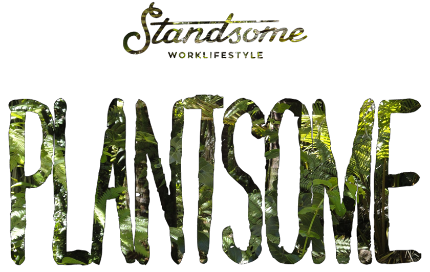 Plantsome - eine Initiative von Standsome und dem Life-Giving Forest e.V.
